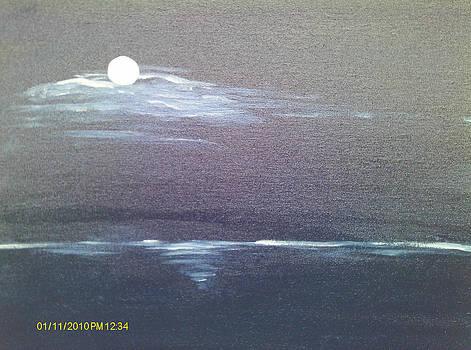 Moonlight by Juliet Nidhan