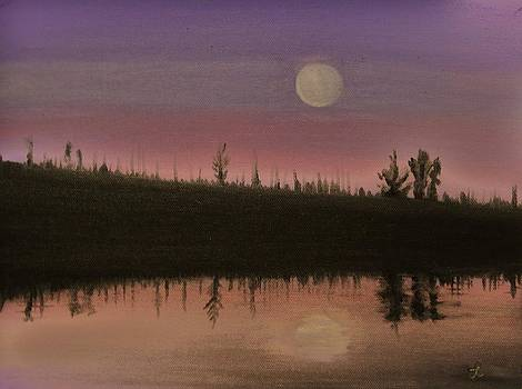 Moonlight Reflection by Laura Evans