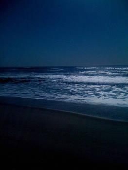Moonlight Waters by Chris Owen