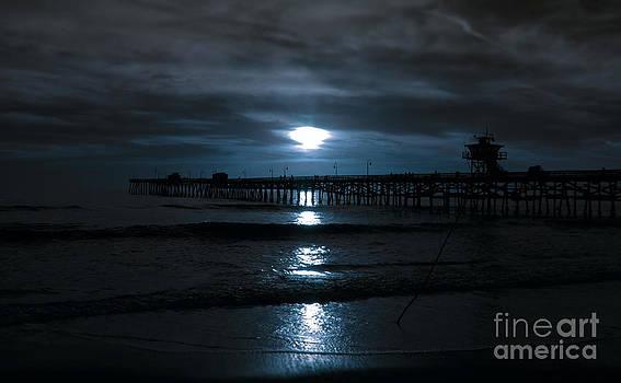 Moonlit Walk by Stephanie Haertling