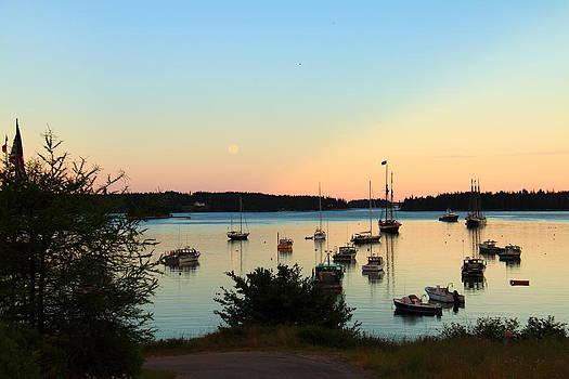 Moonrise at Burnt Coat Harbor by Doug Mills