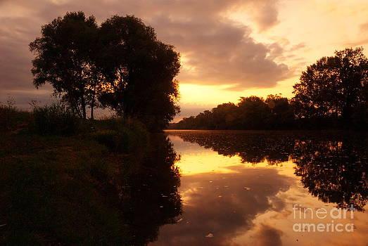 Morning at Kolpa river by Tomaz Kunst