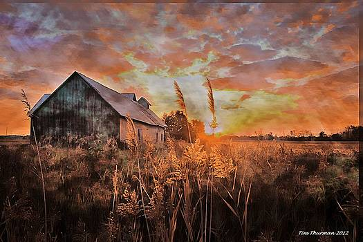 Morning Barn by Timothy Thurman