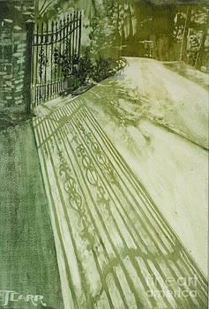 Elizabeth Carr - Morning Light