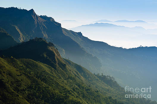 Morning Mist at Tropical Mountain Range by Noppakun Wiropart