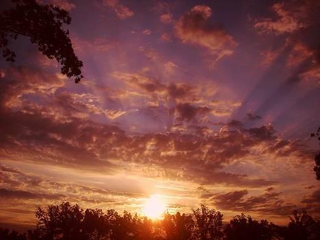 Morning sunrise by Esther Luna