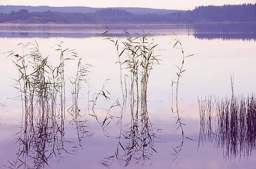 Jenny Rainbow - Morning Zen. Pearly Moments of Sunrise. Ladoga Lake. Northern Russia