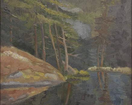 Moss Covered Rock by Karen Lipeika