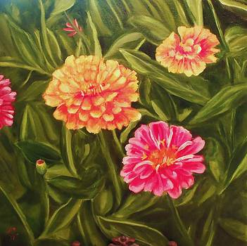 Mothers Zinnias  by Laura Evans