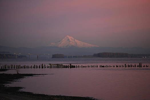 Mount Hood and Columbia River Oregon Washington by Sam Amato