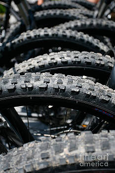 Gaspar Avila - Mountain bike tires