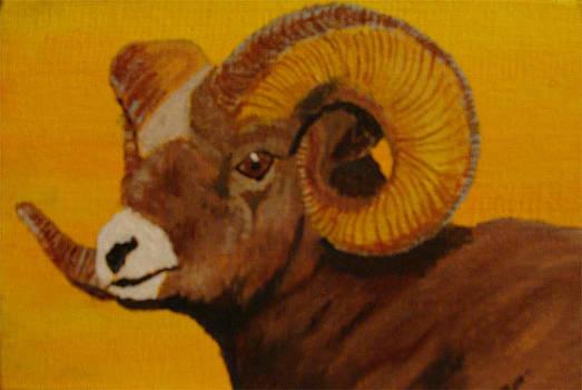 Mountain Ram by Ron Thompson