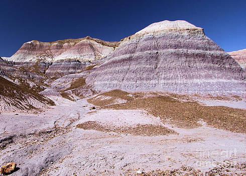 Adam Jewell - Mountain Stripes