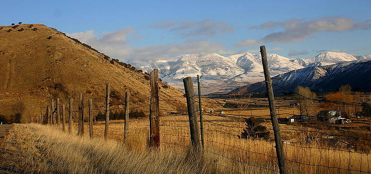 Mountain Valley by Laurie Penrod
