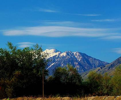 Mountains by Aliesha Fisher
