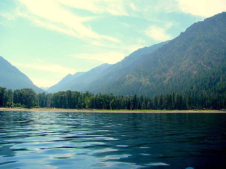 Mountains Forest Clean waters by Amy Bradley