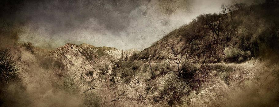 Mountainside  by Torgeir Ensrud
