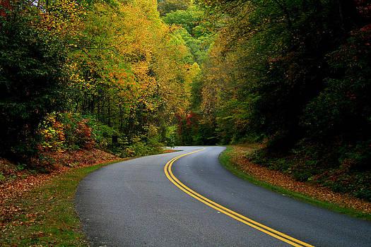 Matthew Winn - Mountan Pass in Autumn