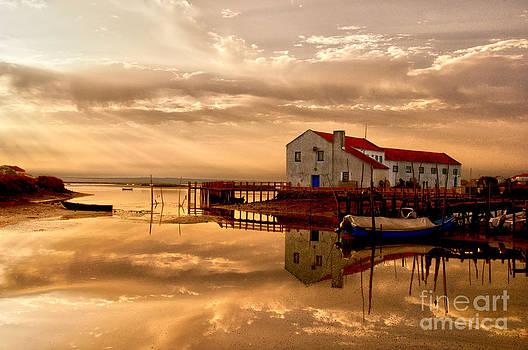 Mourisca - Portugal by Armando Carlos Ferreira Palhau