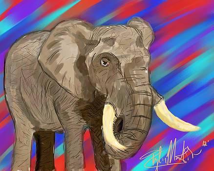 Mr. Elephant by Tyler Martin