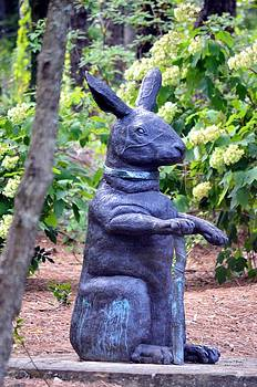 Maria Urso  - Mr Rabbit