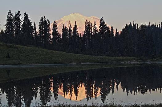 Mt. Rainier at Lake Tipsoo by Daryl Hanauer