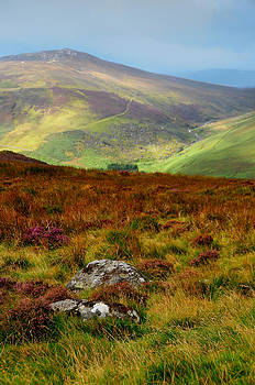 Jenny Rainbow - Multicolored Hills of Wicklow. Ireland