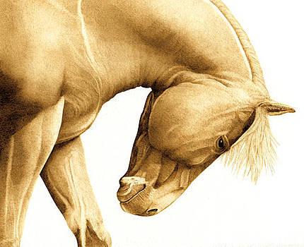 Mustang Sally by Cate McCauley