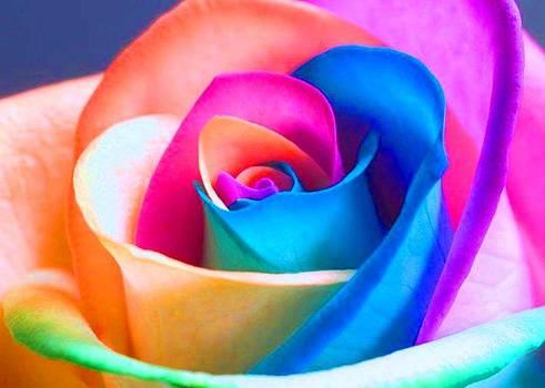 My Colour Full Desires by Maneesh  Kumar