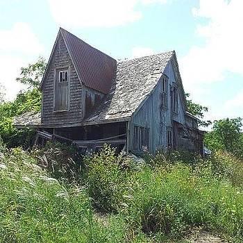 My Favorite House In Summer by Lisa Stunda