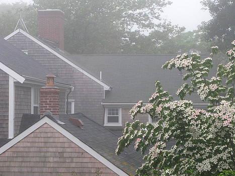 Nantucket Fog 77 by Julia Jones