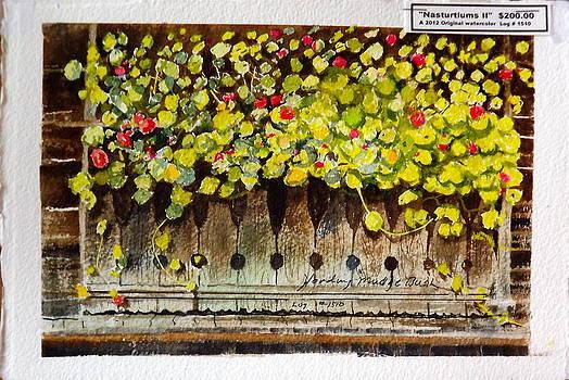 Nasturtiums II by Harding Bush