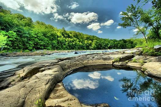 Adam Jewell - Natural Swimming Pool