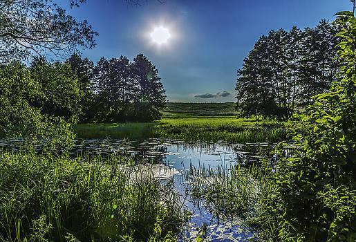 Nature in reflection by Valerii Tkachenko