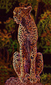 Neon Cheetah by Peter Ambush