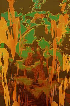 Neon Splash by Lawrence Ott