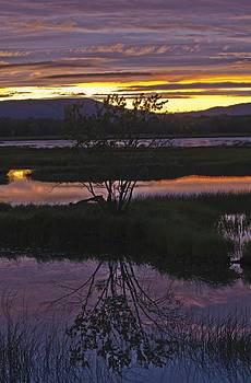 Nerepis Marsh Sunset by Roger Lewis