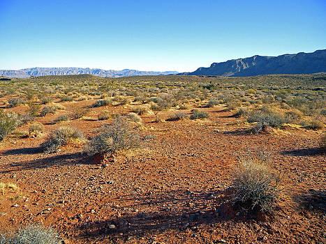Frank Wilson - Nevada Desert