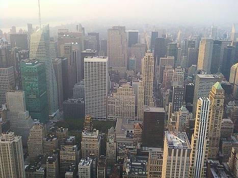 New York Skyline by Carlos Davila