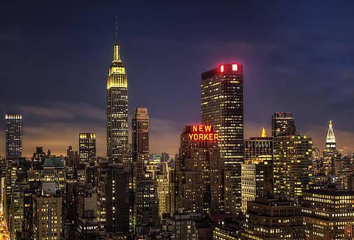 New York  by Yelena Rozov