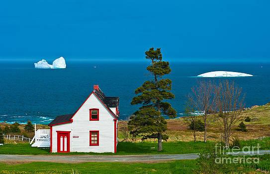 Newfoundland Cabin by David Nunuk