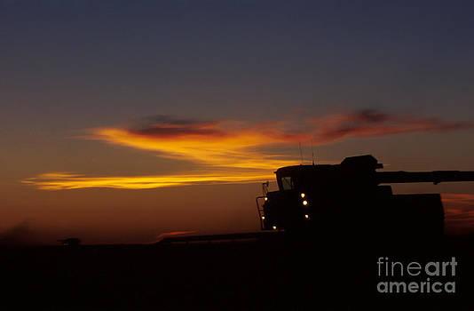 Jerry McElroy - Night Farming