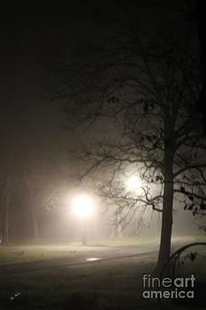 Night Fog by Joy Tudor