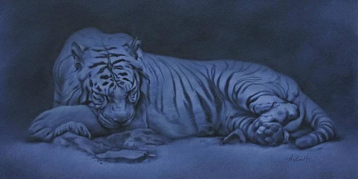 Night Tiger by Peter Ambush