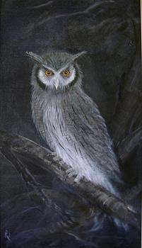 Night Watcher by Rita Palm