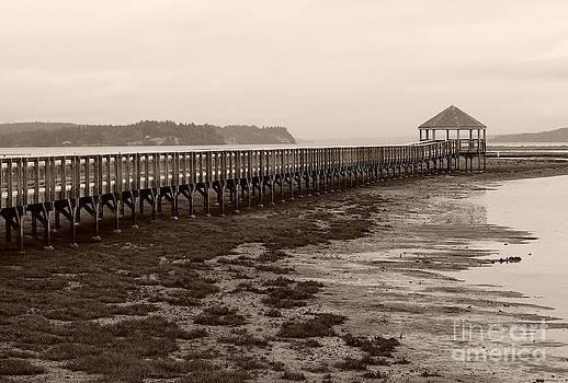 Nisqually Boardwalk by Michael Wyatt