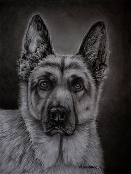 Michelle Wrighton - Noble - German Shepherd Dog