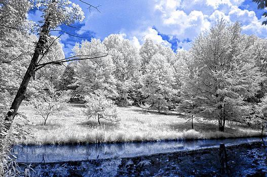Nobob Pond IR by Amber Flowers