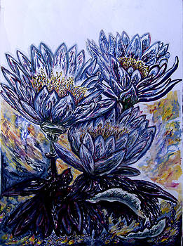 Noosa Everglades Waterlilies by Helen Duley