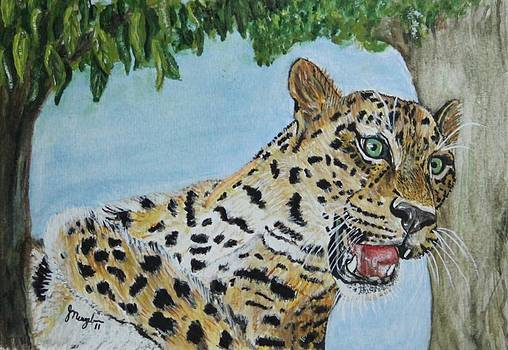 Not the usual Treehugger by Jody Neugebauer